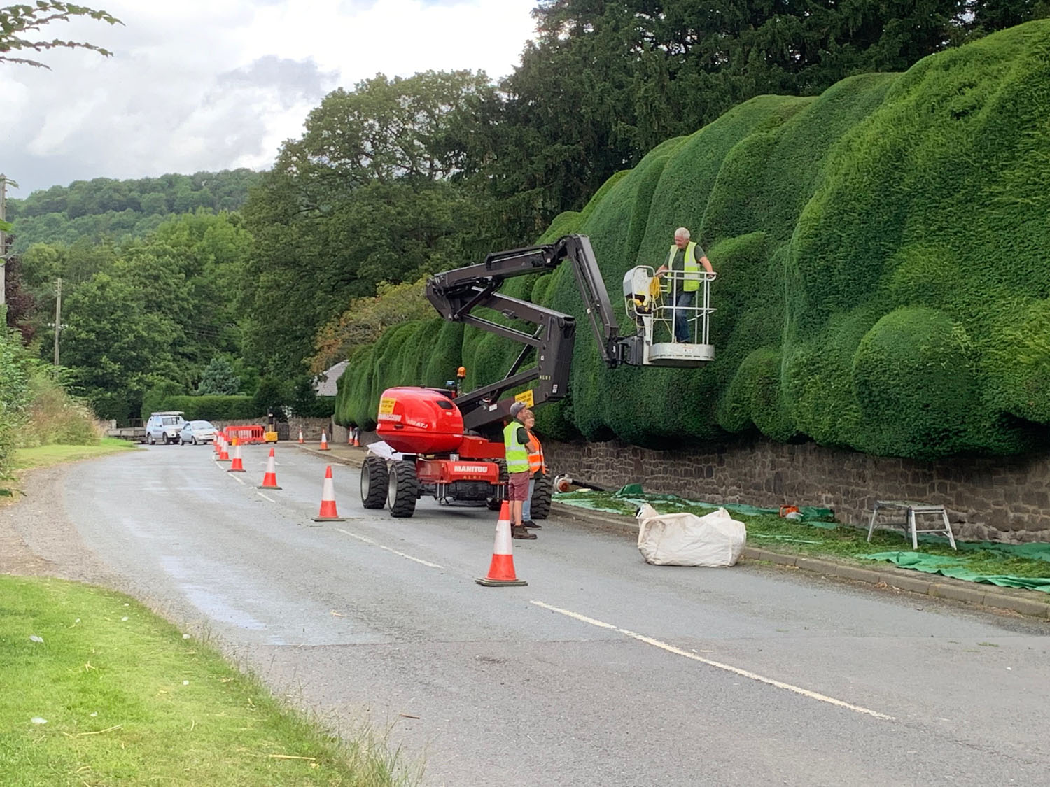 Clipping the hedge.